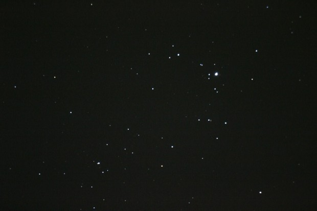 NGC2264
