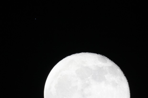 Spica and Moon