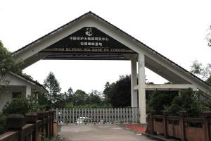 中国保护大熊猫研究中心