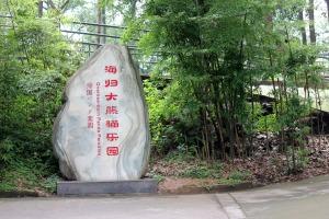 海归大熊猫乐园
