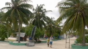 ヒマフシ島